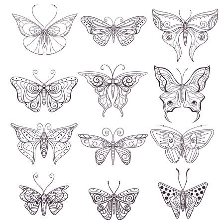 insecto: Tarjeta de felicitación con la mariposa. Ornamental de insectos hizo en el vector. Mariposa determinada. colección de insectos para álbum de recortes de diseño, patrón o textura.