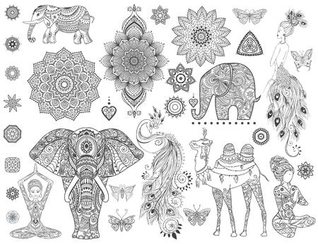 peacock feathers: conjunto ornamental con animales, mandala del vector. Elemento para el diseño y la Declaración. Vectores