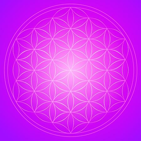 Vector geometrischen Hintergrund ist. Helle Muster. Heilige Geometrie, Blume des Lebens. Vektorgrafik