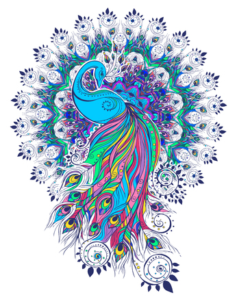 hair feathers: Greeting Beautiful card with peacock Peacock made in vector Color bird for the design of textiles, clothing, T-shirts, wallpaper, print, wall stickers, print Peacock ethnic, east orient ornament