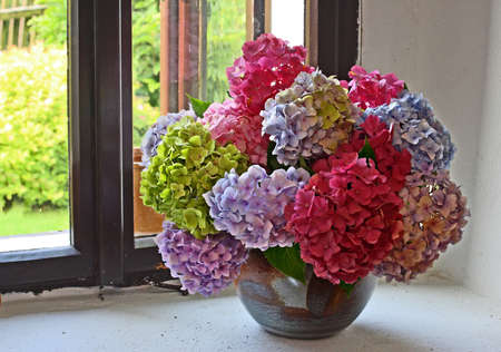 vase of flowers: bunch of hydrangea flowers on a windowsill
