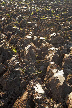 fresh plugged soil Standard-Bild