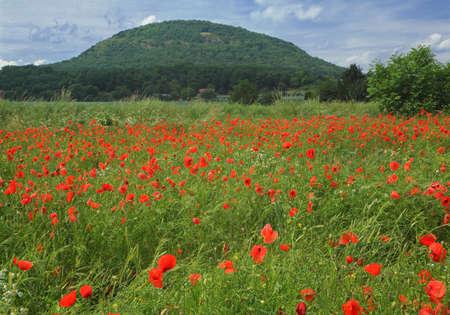Mountain Rip memorable hill - Czech Republic