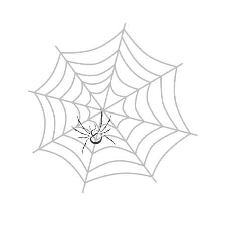 kleur spinnenweb thema vector kunst grafische illustratie Stock Illustratie