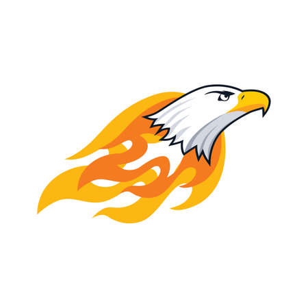bold: bold firey eagle bird