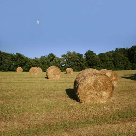 Hay bales on an idyllic field near Kassel and Ahnatal-Weimar in Germany photo