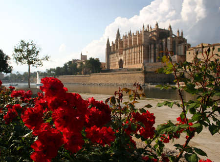 Cathedral La Seu in Palma de Mallorca, Spain. This church is one of the famous landmarks of Mallorca (Majorca). In the foreground Park del Mar with the salt water lake and red roses. On the left side you can see the spanish kings palace Palau de l'Almundi