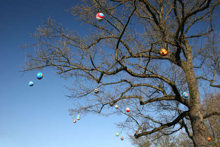 Some colourfull easter eggs hanging at branches of a tree photo