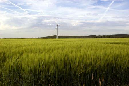 Alternative energies - Windmills and a wheat field photo