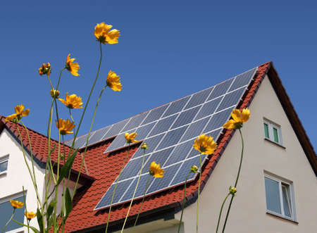 photovoltaic panel: Solar cells on a roof with flowers in the foreground Stock Photo