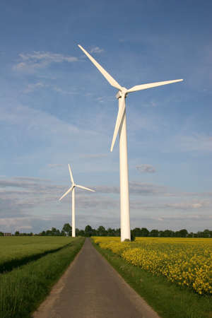Wind farm with rape field and footpath Stock Photo - 8569655