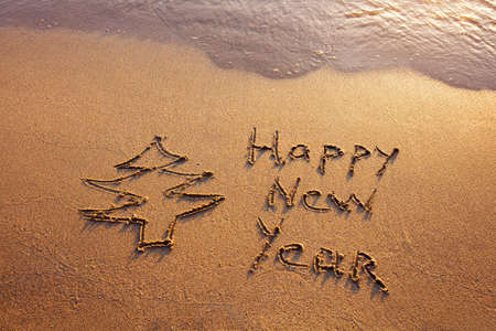 new year s eve: happy new year