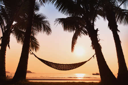 tropical paradise: hammock and palm trees on the beach