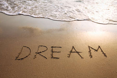 dreams: dream