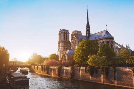 notre dame cathedral: Notre Dame cathedral at sunset in Paris, France