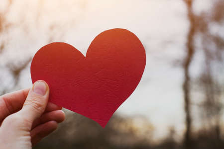 heart in hand: valentines day card, hand holding heart Stock Photo