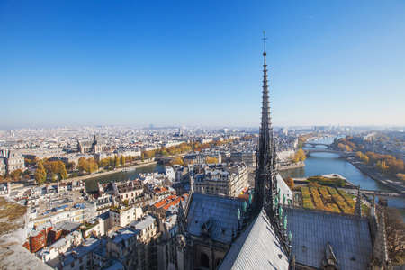gothic architecture: panoramic view of Paris from Notre Dame cathedral, gothic architecture, beautiful european city, France