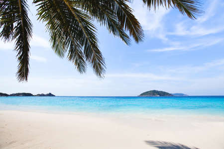 turquoise water: paradise beach background with copyspace, turquoise water, white sand and blue sky