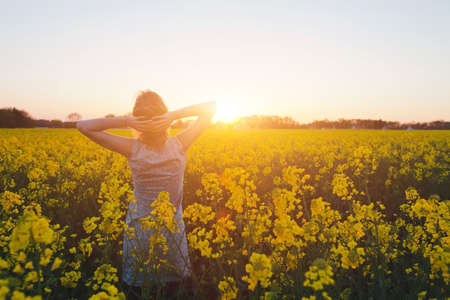 young woman enjoying summer and nature in yellow flower field at sunset, harmony and healthy lifestyle Zdjęcie Seryjne
