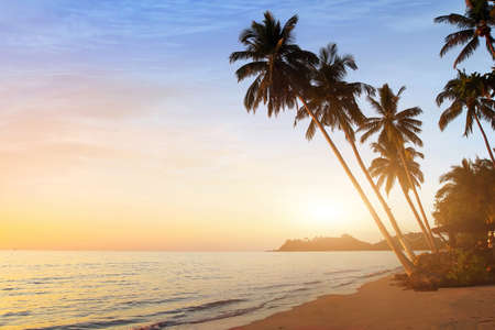 beautiful sunset on the tropical beach