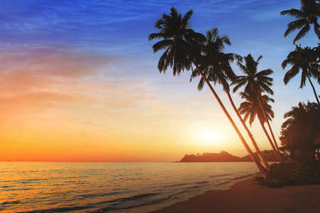 beautiful exotic beach landscape at sunset, tropical holidays on the sea Фото со стока