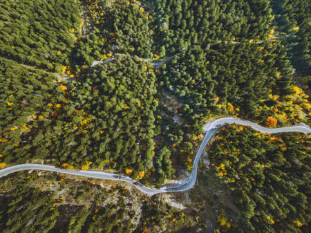 aerial landscape of winding road in the forest, beautiful serpentine view from drone