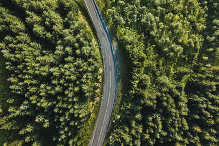 beautiful scenic road in the forest, aerial view from drone, travel background