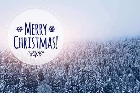merry christmas card in winter snowy forest background