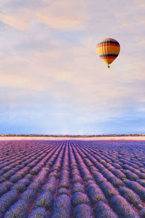 travel destination, beautiful dream inspirational landscape with hot air balloon flying above lavender fields in Provence, tourism in France Imagens
