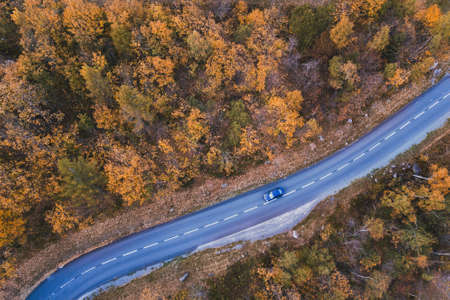 autumn forest aerial landscape background, fall season travel, top view of car driving on asphalt road