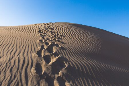 wind patterns and footsteps in sand desert Bafgh in Yazd, Iran