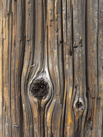 telephone pole: Urban Wood Grain (vertical)