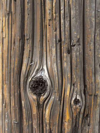telephone poles: Urban Wood Grain (vertical)