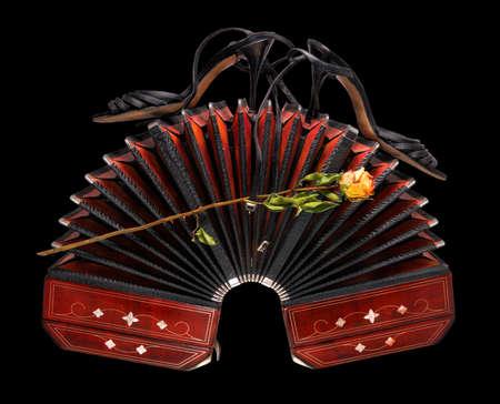 Bandoneon szeroko otwarte z tanga buty i suchej rose, samodzielnie na czarnym tle Zdjęcie Seryjne