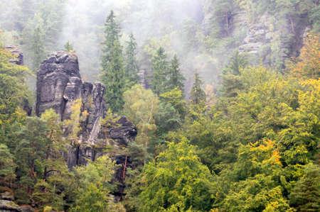 schweiz: Saxische Schweiz (Saxon Switzerland) mountains in autumn mist. Saxony, Germany