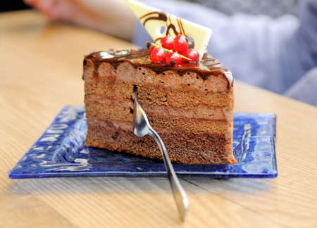 traditionally: Closeup on a slice of a chocolate cake traditionally made in Prague Stock Photo