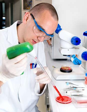 pipeta: Jóvenes científicos en bata de laboratorio, mientras que trabaja en el laboratorio Foto de archivo