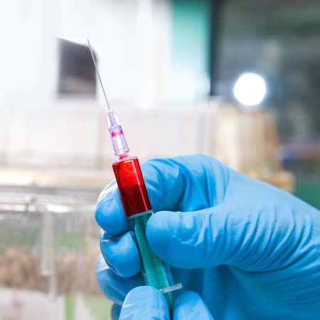 Hands in blue disposable gloves hold disposable syringe loaded for injection  Reklamní fotografie