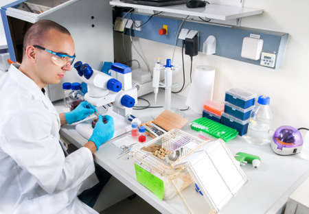 lab technician: Young scientist  in while lab coat works in the laboratory Stock Photo