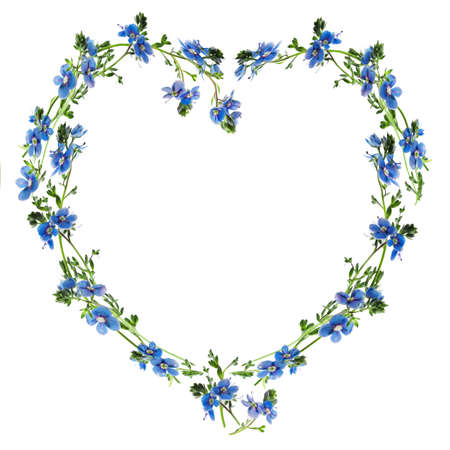 Forget-me-nots made into the heart outline photo