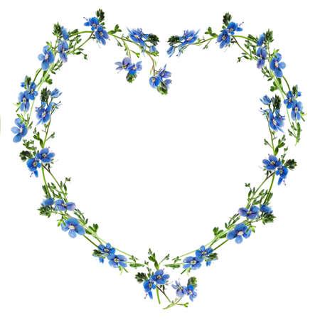 Forget-me-nots wykonane do zarysu serca Zdjęcie Seryjne