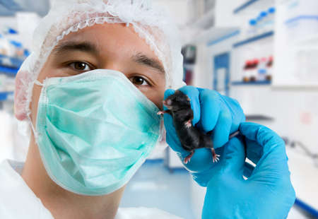 Scientist in protective wear holds experimental mouse Stock Photo - 11724101
