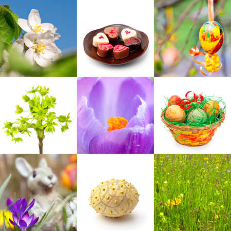 Easter collage; spring flowers and Easter symbols, composed from macro shots and isolated objects photo
