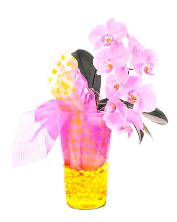 Phalenopsis orchid arrangement in pink and yellow Stock Photo - 14009390