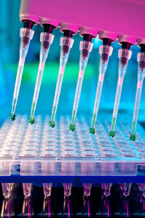 sequencing: Tools for PCR amplification of DNA: 96-well plate and automatic pipette Stock Photo
