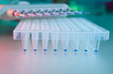 amplification: Outils pour l'analyse d'ADN par amplification par PCR