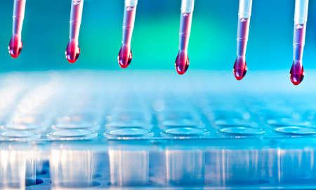 pipeta: An�lisis de ADN carga mezcla de reacci�n en placa de 96 pocillos usando una pipeta multicanal