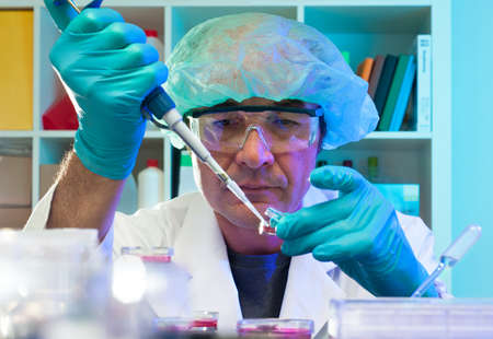 Senior technical assistant changes medium in Petri dishes Stock Photo - 14695194
