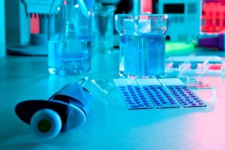 pipeta: Diapositivas histoquímicos microscopio teñidas con hematoxilina-eosina