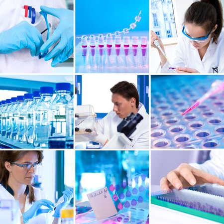 bioteknik: Unga forskare arbetar i moderna vetenskapliga labb, collage